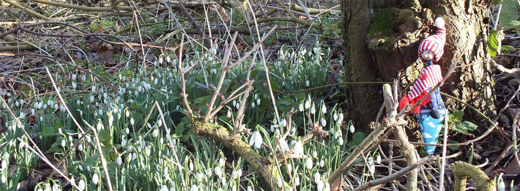 Growing Talk Together - Mikey in snowdrops