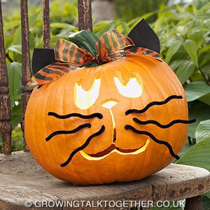 Hey-Cat-–-Halloween-Pumpkin-Carving-Ideas